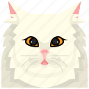 animal, avatar, cat, kitty, persian, pets