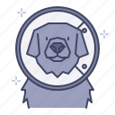 care, colloar, cone, dog, healing, recovery, surgery icon