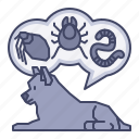bugs, care, dog, fleas, infection, ticks, worms icon