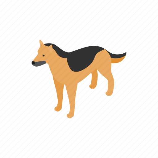 animal, blog, canine, dog, isometric, pet, shepherd icon