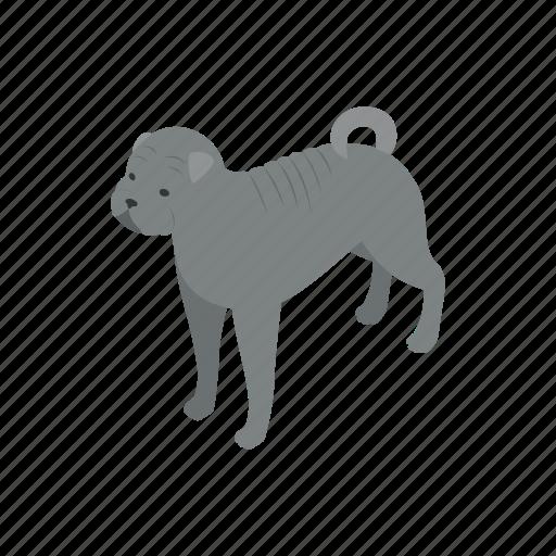 animal, blog, bulldog, canine, dog, isometric, pet icon