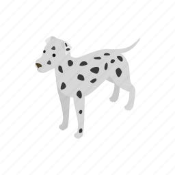 animal, blog, canine, dalmatians, dog, isometric, pet icon