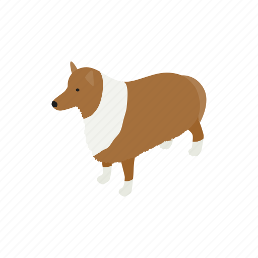 Animal, blog, canine, collie, dog, isometric, pet icon - Download on Iconfinder
