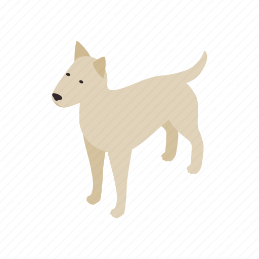 animal, blog, canine, dog, isometric, pet, pitbull icon