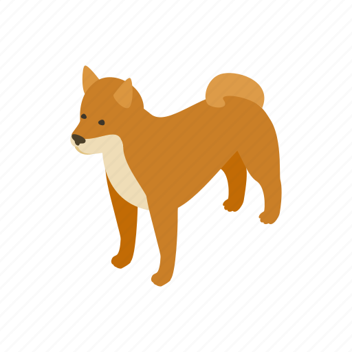 akita, animal, blog, canine, dog, isometric, pet icon