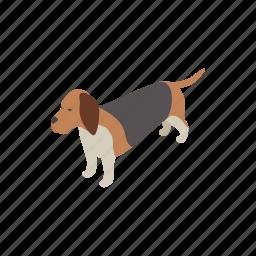 animal, basset hound, blog, canine, dog, isometric, pet icon