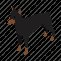 animal, blog, canine, doberman, dog, isometric, pet icon
