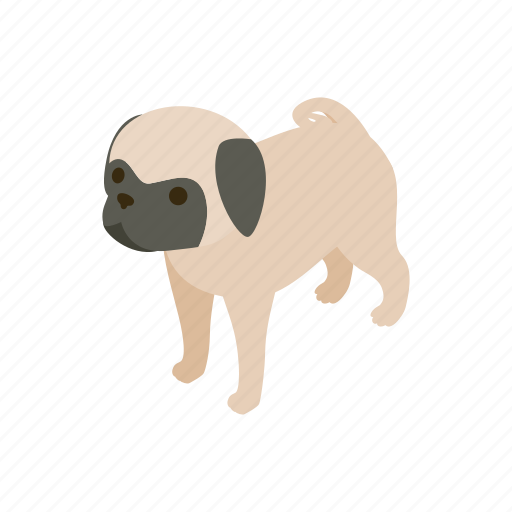 animal, blog, canine, dog, isometric, pet, pug icon