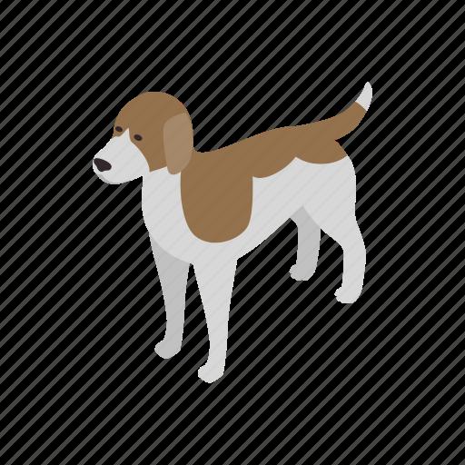 animal, beagle, blog, canine, dog, isometric, pet icon