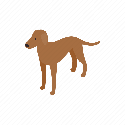 animal, blog, canine, dog, isometric, pet, ridgeback icon