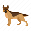 dog, beast, shepherd, mammal, german shepherd, pet icon