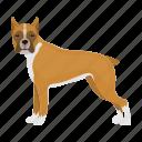 boxer, dog, beast, mammal, pet icon