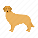 retriever, dog, beast, mammal, pet icon