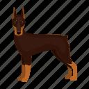 doberman, dog, beast, mammal, pet icon