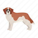 dog, beast, mammal, pet, st. bernard icon