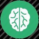 brain, mind, brainstorming, thinking