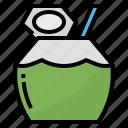 coconut, drink, fresh, nature icon
