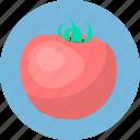 food, fruit, tomato, vegetables icon