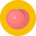 eat, food, fruit, tomato, vegetable, vegetables icon