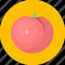 eat, food, fruit, tomato, vegetable, vegetables icon