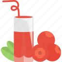 berry, drinks, fruit, glass, juice icon