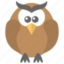 bird, cartoon owl, owl, wisdom, wise bird icon