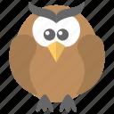 bird, cartoon owl, owl, wisdom, wise bird