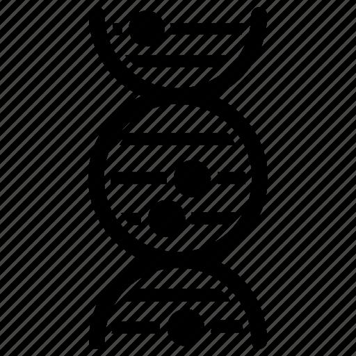 deoxyribonucleic acid, dna, dna test, genes, genetics icon