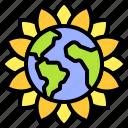 earth, environment, ecology, sunflower, flower