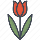 easter, flower, holiday, tulip icon