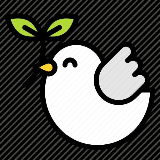 bird, branch, dove, easter, peach icon