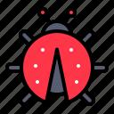 bug, easter, insect, ladybug