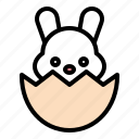 bunny, easter, eggshell, rabbit icon