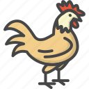 cock, colored, easter, holidays, rooster