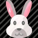 animal, bunny, easter, rabbit, zoo
