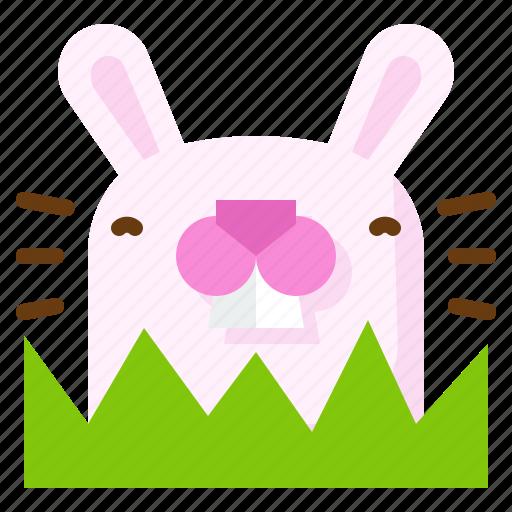 Animal, bunny, mammal, pet, rabbit icon - Download on Iconfinder