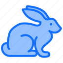 easter, rabbit, animal, bunny