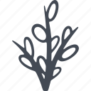 branches, branches with buds, easter, tree branch icon