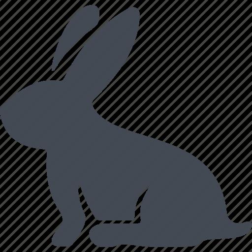 bunny, celebration, easter, egg icon