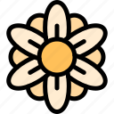 easter, flower, plant, pretty icon