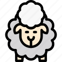 animal, easter, sheep, wool icon