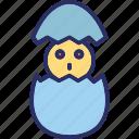 bunny, chicken, chicken egg, easter icon