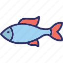 fish, sea, sea animal, seafood icon