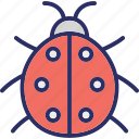 animal, bug, error, insect icon
