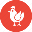 chicken, cock, cockerel, hen icon