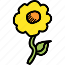 easter, ecology, floral, flower, nature, plant, spring icon