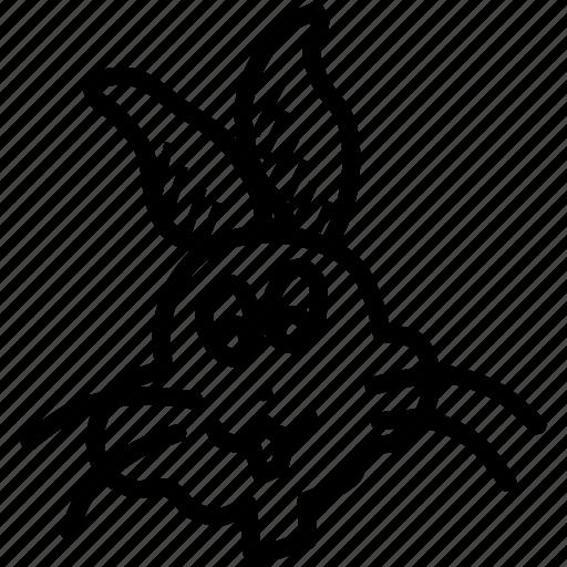 animal, bunny, cute, easter, pet, rabbit icon