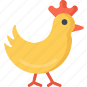 chick, chicken, christianity, easter, holidays icon