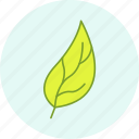 celebration, easter, event, holiday, leaf, party icon