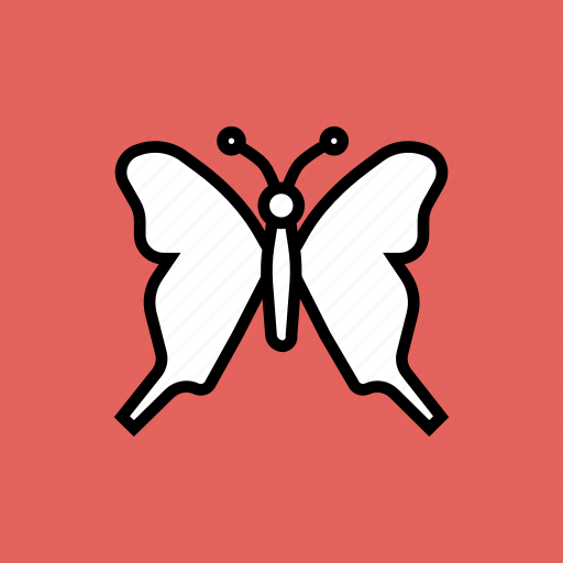 beauty, butterfly, colorful, easter, garden, insect, nature icon